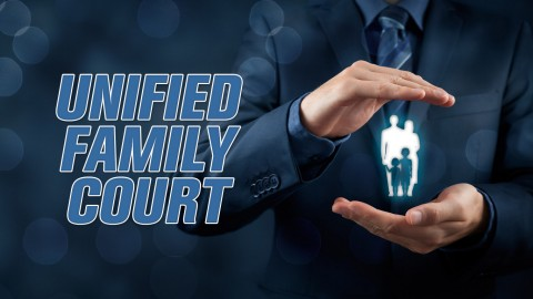 We are discussing the Miami-Dade Unified Family Court June 21st!