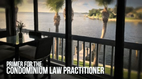 Primer for the Condominium Law Practitioner