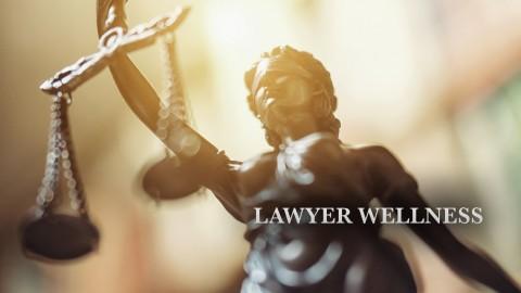 Lawyer Wellness