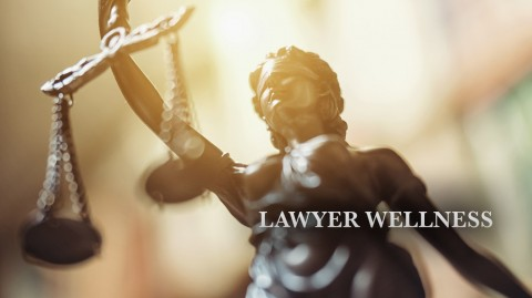 Lawyer Wellness